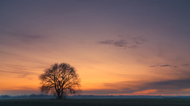 HD TIME-LAPSE: Beautiful Nature Scene At Sunset