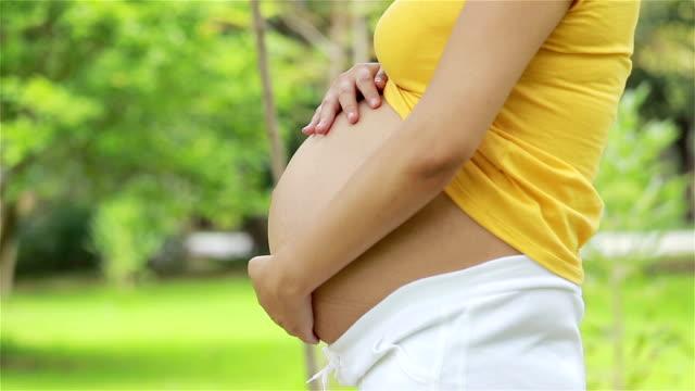 vídeos de stock e filmes b-roll de linda mulher asiática grávida relaxante no parque - parte do corpo animal