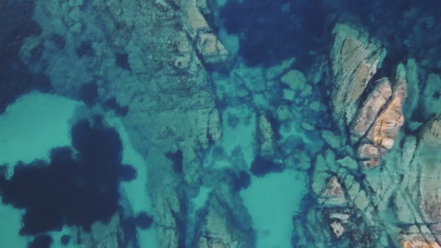 beautiful reefs in transparent sea water - cliff stock videos & royalty-free footage