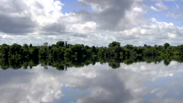 beautiful reflection on amazon river - amazonas state brazil stock videos and b-roll footage