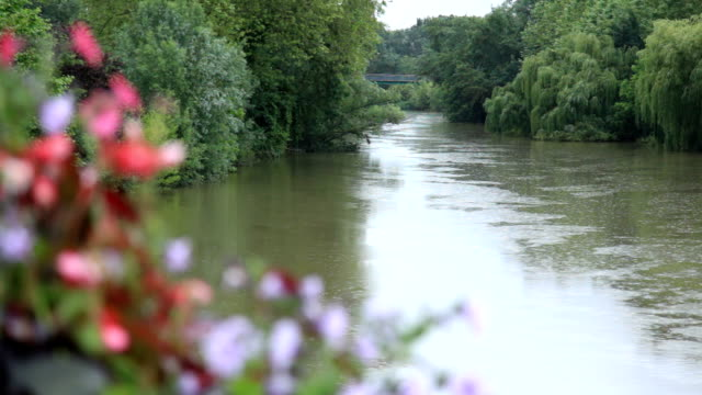 vidéos et rushes de magnifique rivière à louhans, bourgogne, france - canal eau vive