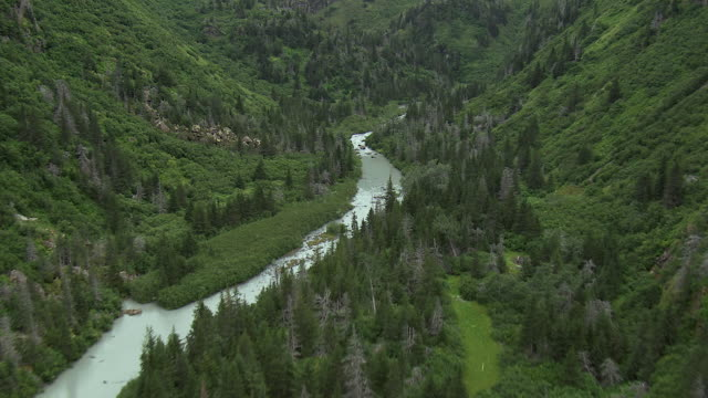 beautiful river valley in remote alaska - extreme terrain stock videos & royalty-free footage