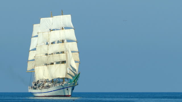 beautiful sailboat in the open sea - nave a vela video stock e b–roll