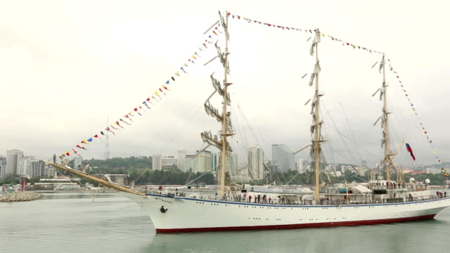 beautiful sailing ship in the port of sochi - animal markings stock videos & royalty-free footage