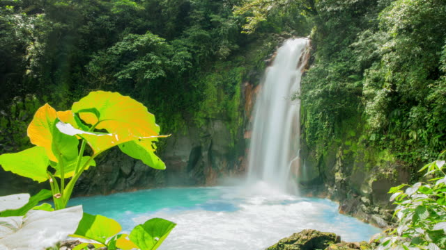 t/l beautiful shot of guanacaste waterfall in 8k - costa rica stock videos & royalty-free footage