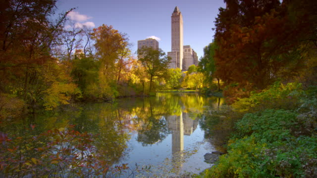 Beautiful shot of The Lake in Central Park, New York City. The surrounding trees are in full fall foliage and the water reflects back all of the greens, oranges, and reds of the leaves