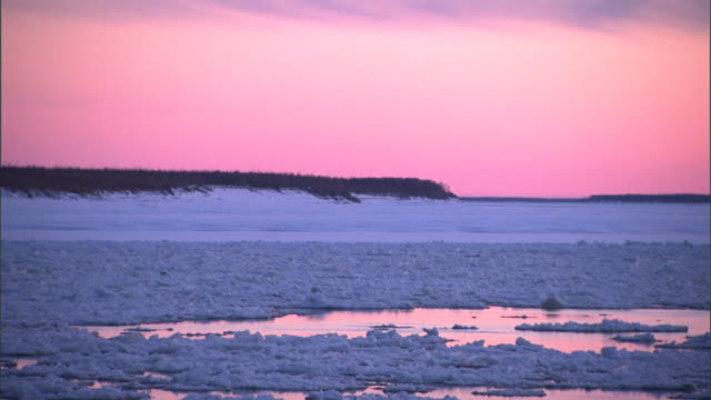 a beautiful sky reflects in the ocean with ice floes in the water. - ice floe stock videos & royalty-free footage