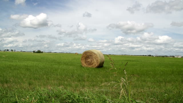 beautiful sky with clouds flowing over lone hay bale - hay isolated stock videos & royalty-free footage