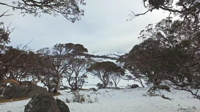 beautiful snow mountain, australia. - australian alps stock videos & royalty-free footage