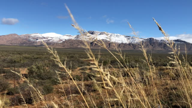 vackra snowy mountain karoo vinterlandskap sydafrika bakgrund fokus - karoo bildbanksvideor och videomaterial från bakom kulisserna