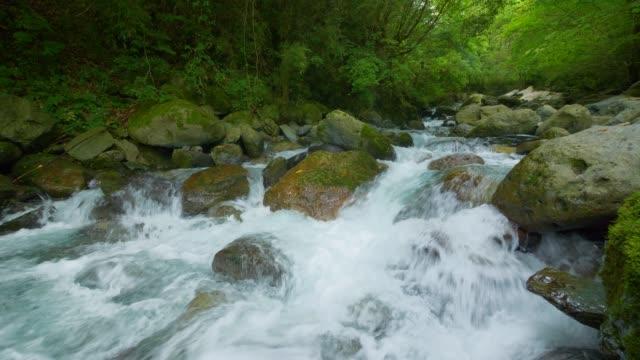 beautiful stream - waterfall stock videos & royalty-free footage