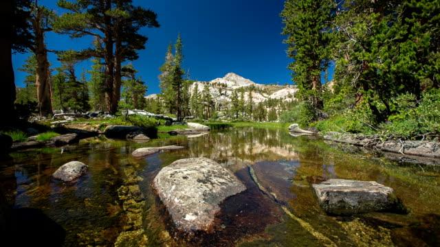 bellissimo flusso - parco nazionale di sequoia video stock e b–roll