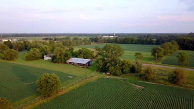 vidéos et rushes de magnifique summertime sunset aerial footage of the michigan farm land - michigan