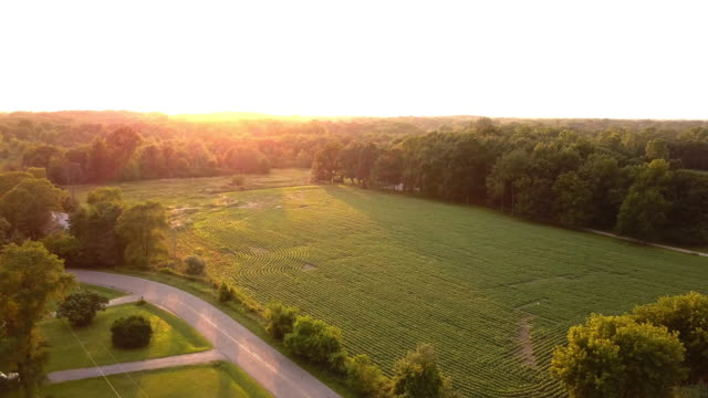 vídeos de stock e filmes b-roll de beautiful summertime sunset aerial footage of the michigan farm land - quinta