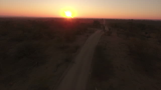 a beautiful sunrise over a game reserve near kruger national park in south africa taken with a 4k drone - savannah stock videos and b-roll footage