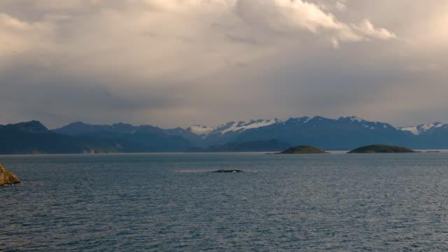 vídeos de stock, filmes e b-roll de beautiful sunset in patagonia - passear sem destino
