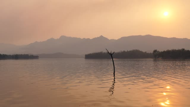 beautiful sunset over mountains and lake - tree trunk stock videos & royalty-free footage