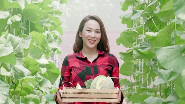 Beautiful Thai woman owner while smiling and carrying melon with positive emotion