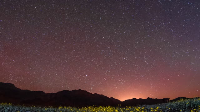beautiful time lapse shot showing the stars moving over a field of flowers in death valley, california. - constellation stock videos & royalty-free footage