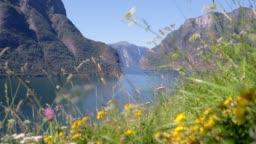 Beautiful top view to the Aurlandfjord, Norway.