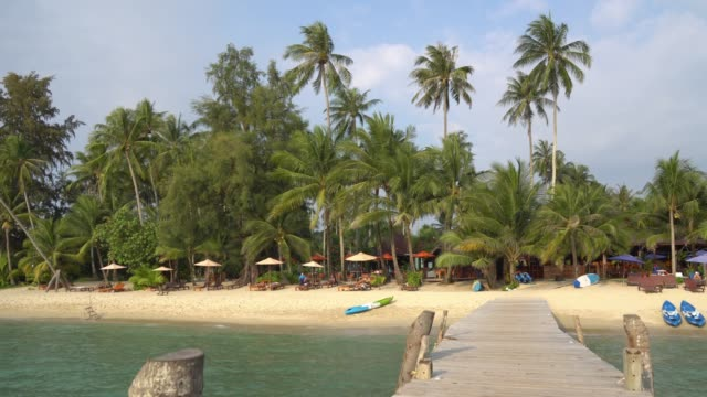 Beautiful tropical beach and sea with coconut palm tree in the island