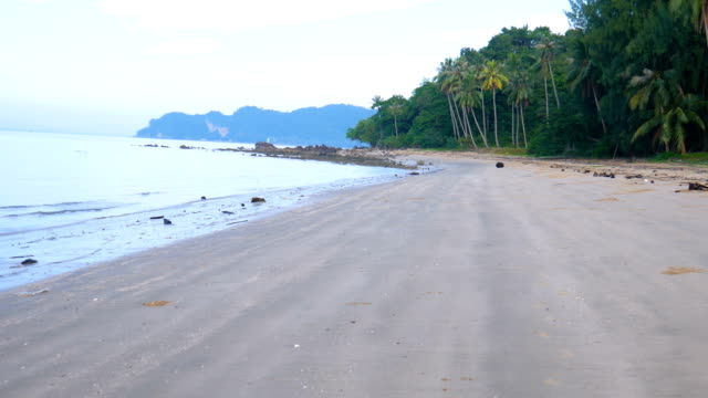 Beautiful Tropical Beach in the Morning