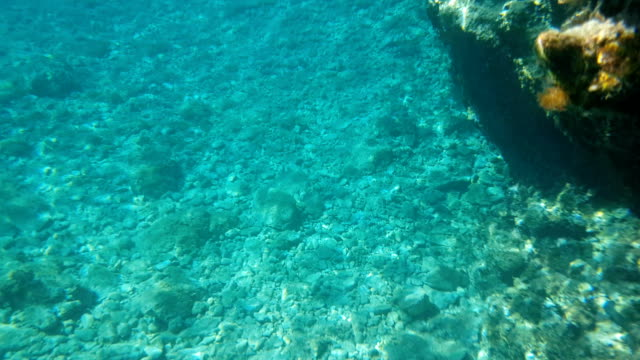 Beautiful Turquoise background of the seabed with small stones. Daylight. Sunlight.