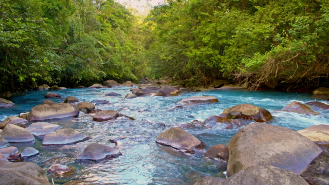 ds beautiful turquoise colored river rio celeste - dolly shot stock videos & royalty-free footage