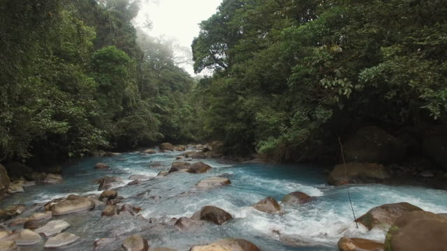 aerial beautiful turquoise river rio celeste - costa rica video stock e b–roll