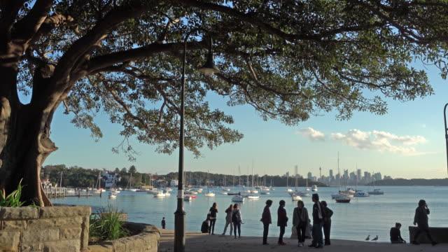 ワトソン湾、オーストラリアの美しい景色 - フェリーターミナル点の映像素材/bロール