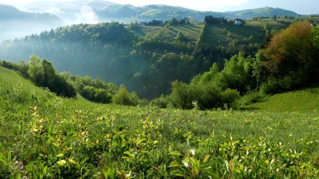 Beautiful view in Transylvania, from high mountain fields with flowers, hey stacks in front, a slow lateral dolly motion