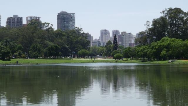 vídeos de stock e filmes b-roll de beautiful view of sao paulo skyline - cultura sul americana