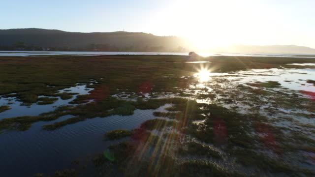 vídeos y material grabado en eventos de stock de hermosa vista de la laguna de knysna al atardecer - provincia occidental del cabo