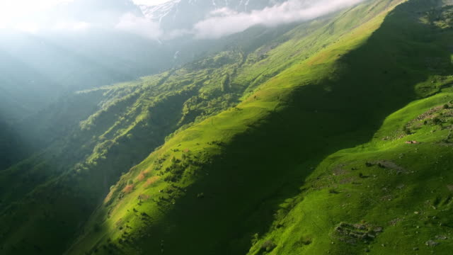vídeos de stock e filmes b-roll de beautiful view of the mountains from the drone. - green