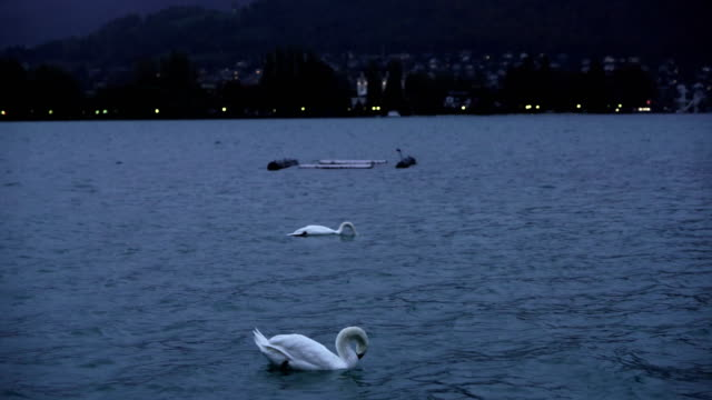 beautiful view on french alps at lake annecy - auvergne rhône alpes stock videos & royalty-free footage