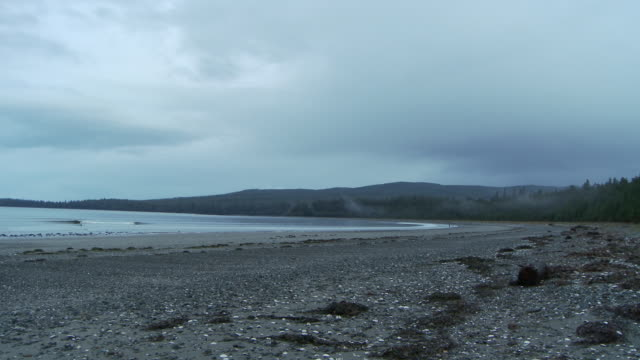 vídeos de stock e filmes b-roll de a beautiful view on the beach / sandspit, british columbia, canada - banco de areia
