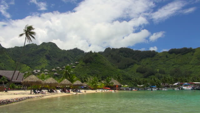 beautiful village with mountains and flying birds - tahiti video stock e b–roll