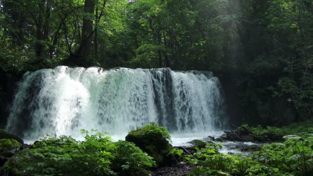 beautiful water fall - 滝点の映像素材/bロール