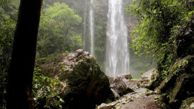 beautiful waterfall in australian rainforest - rock stock videos & royalty-free footage