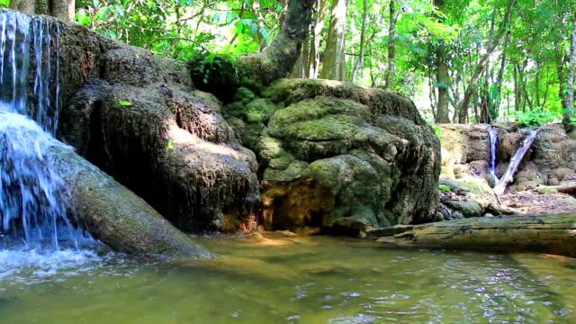 HD-PAN SCHUSS: Schöner Wasserfall im Wald.