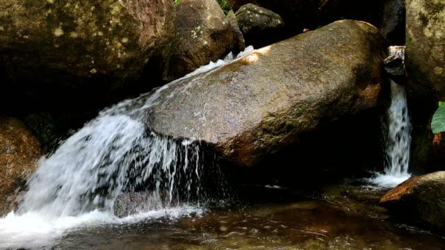 wasserfall im regenwald und oberlauf wald, 4k. - destilliertes wasser stock-videos und b-roll-filmmaterial
