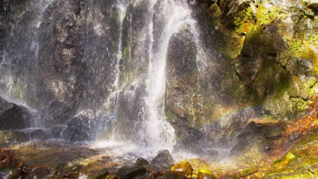 vidéos et rushes de slo missouri superbe cascade - mousse végétale