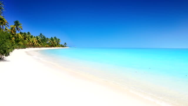 beautiful white pure sand beach at tropical island - bahamas stock videos & royalty-free footage