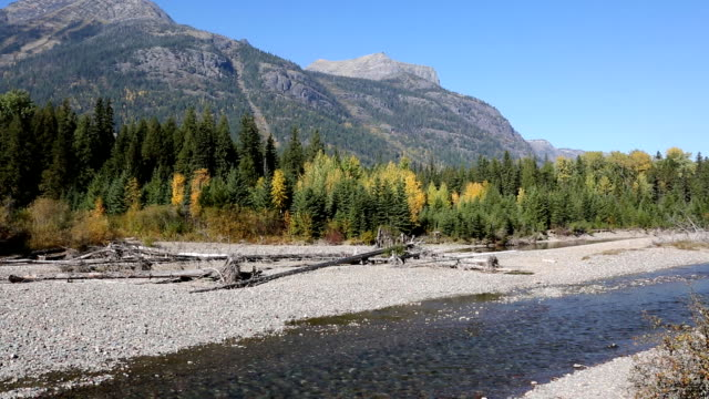 beautiful wild mountain river - glacier national park us stock videos and b-roll footage