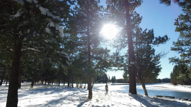 beautiful winter landscape with adult male walking towards the river - solstice stock videos & royalty-free footage