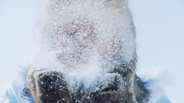 stockvideo's en b-roll-footage met hd slow-motion: beautiful woman blowing the snow - dicht