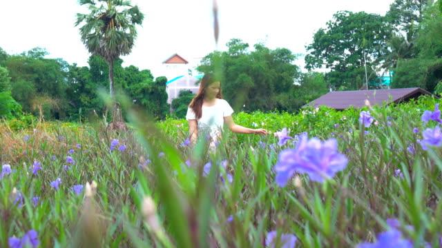 beautiful woman enjoying walking in flower field - light natural phenomenon stock videos & royalty-free footage
