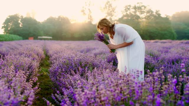 stockvideo's en b-roll-footage met ds mooie vrouw verzamelen boeket van lavendel - witte jurk