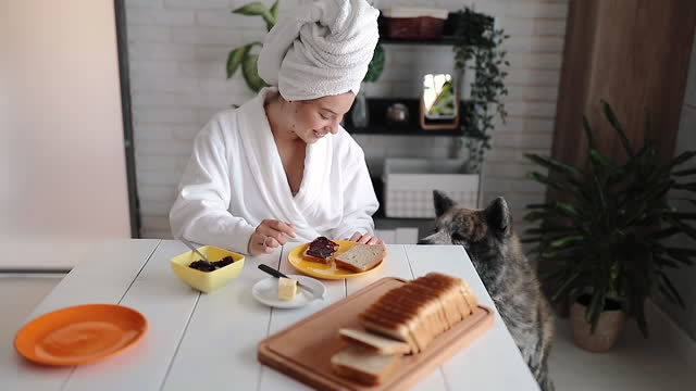 beautiful woman has breakfast at home - pets stock videos & royalty-free footage