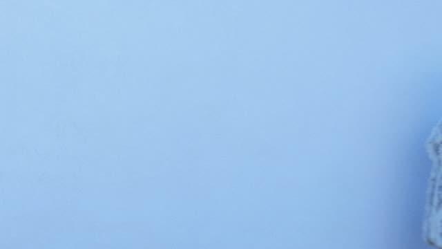 vídeos y material grabado en eventos de stock de hermosa mujer en blue coat sobre fondo azul - imagen minimalista